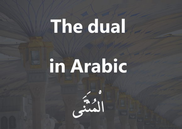 The dual in Arabic | Arabic free course